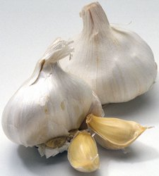 How To Cook And Prepare Garlic